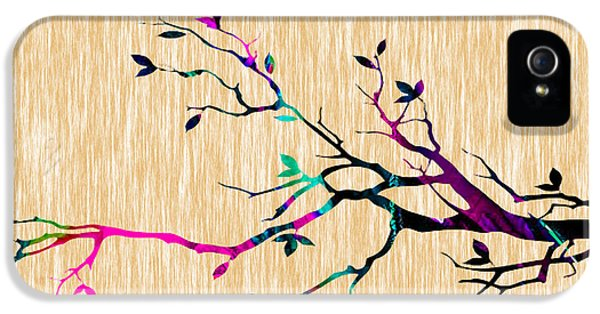 Tree Branch IPhone 5 Case by Marvin Blaine