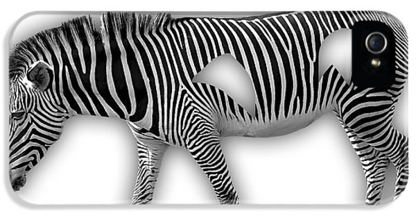 Zebra Collection IPhone 5 Case