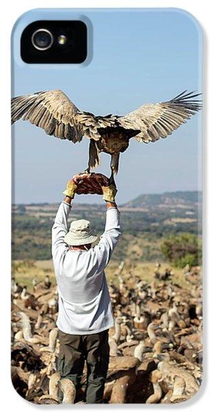 Griffon Vulture Conservation IPhone 5 Case