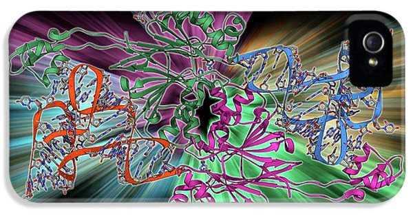 Ribonuclease Bound To Transfer Rna IPhone 5 Case by Laguna Design