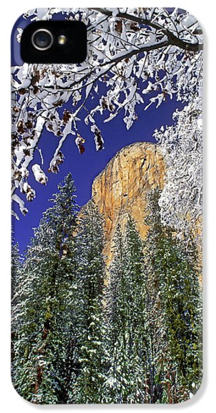Usa, California, Yosemite National Park IPhone 5 Case by Jaynes Gallery