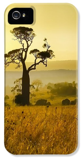 iPhone 5 Case - A Boab Sunrise by Holly Kempe