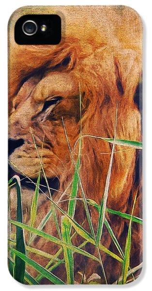 A Lion Portrait IPhone 5 / 5s Case by Angela Doelling AD DESIGN Photo and PhotoArt