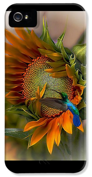 Hummingbird iPhone 5 Case - A Moment In Time by John  Kolenberg
