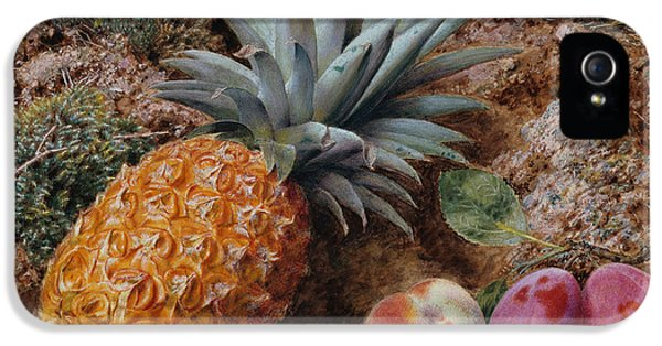 A Pineapple A Peach And Plums On A Mossy Bank IPhone 5 Case by John Sherrin