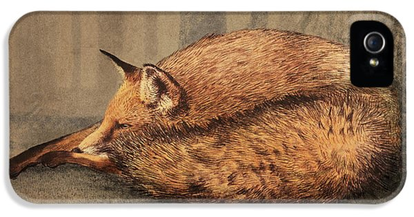 A Quiet Place IPhone 5 Case by Eric Fan