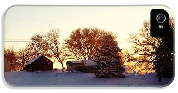 Blue iPhone 5 Case - A Snowy Morning by Christy Beckwith