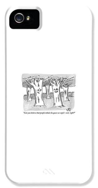 Breathe iPhone 5 Case - A Tree In A Forest Addresses Another Tree by Farley Katz
