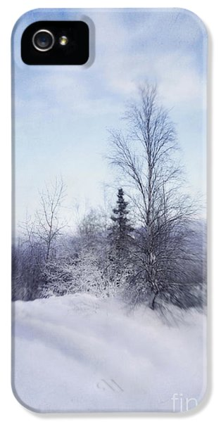 A Tree In The Cold IPhone 5 Case by Priska Wettstein
