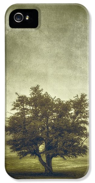 A Tree In The Fog 2 IPhone 5 Case by Scott Norris