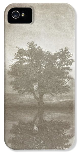 A Tree In The Fog 3 IPhone 5 Case by Scott Norris