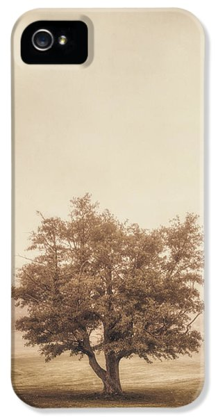 A Tree In The Fog IPhone 5 Case by Scott Norris