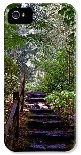 A Wooded Path IPhone 5 Case by Anthony Baatz