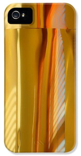 Abstract In Brass - 3 - Historic Library Building - Omaha Nebraska IPhone 5 Case by Nikolyn McDonald