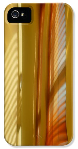Abstract In Brass 5 - Historic Library Building - Omaha Nebr IPhone 5 Case by Nikolyn McDonald