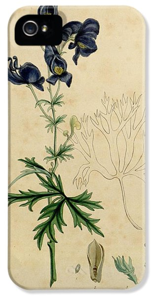 Aconitum Napellus By Sowerby IPhone 5 Case