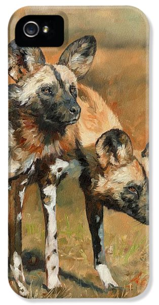 African Wild Dogs IPhone 5 Case by David Stribbling