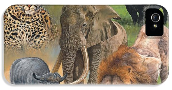 Africa's Big Five IPhone 5 Case by David Stribbling