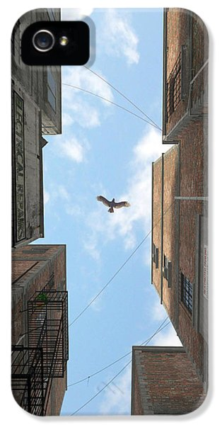 Afternoon Alley IPhone 5 Case by Cynthia Decker