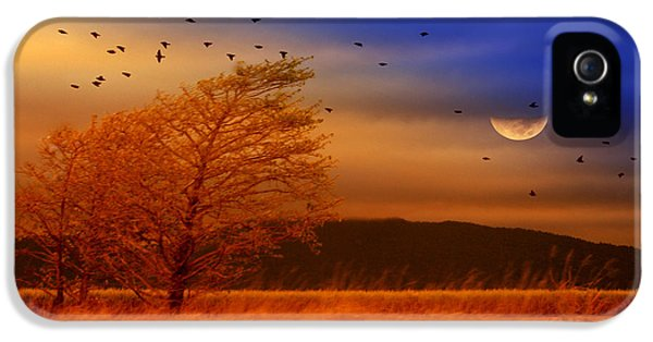 iPhone 5 Case - Against The Wind by Holly Kempe