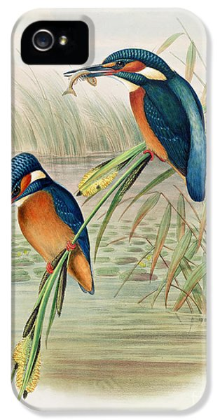 Alcedo Ispida Plate From The Birds Of Great Britain By John Gould IPhone 5 / 5s Case by John Gould William Hart