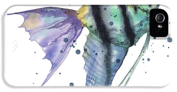 Alluring Angelfish IPhone 5 Case by Alison Fennell
