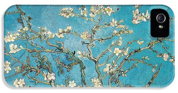 Almond Branches In Bloom IPhone 5 Case by Vincent van Gogh