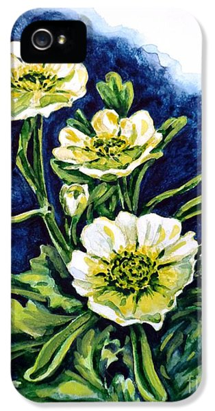 Alpine Ranunculus IPhone 5 Case
