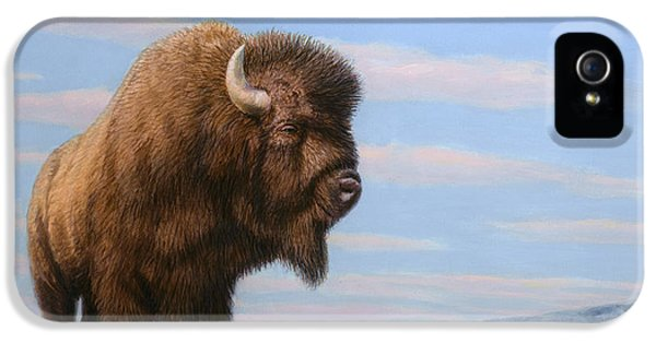 American Bison IPhone 5 / 5s Case by James W Johnson