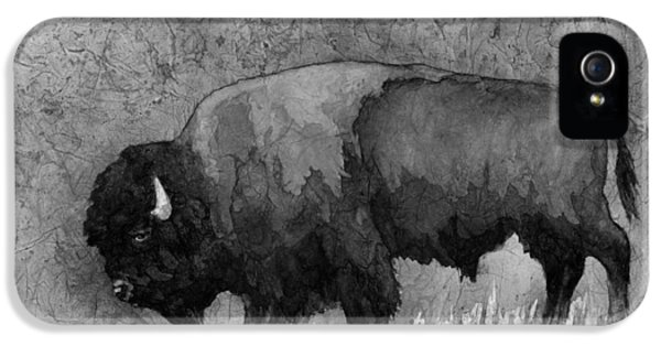 Monochrome American Buffalo 3  IPhone 5 Case by Hailey E Herrera