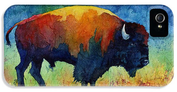 American Buffalo II IPhone 5 Case by Hailey E Herrera