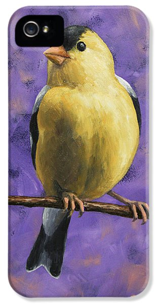 Finch iPhone 5 Case - American Goldfinch by Crista Forest