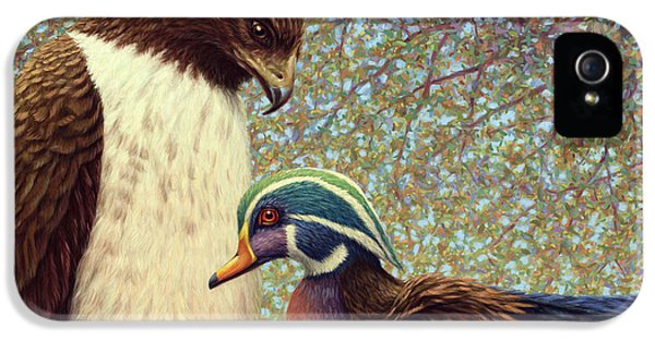 Hawk iPhone 5 Case - An Odd Couple by James W Johnson
