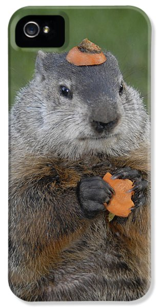 And Have You Looked In The Mirror Lately IPhone 5 Case