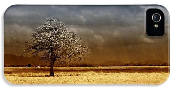 And The Rains Came IPhone 5 Case