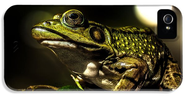 And This Frog Can Sing IPhone 5 Case