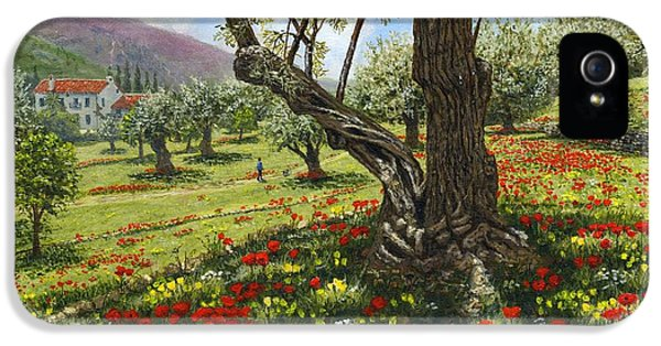 Andalucian Olive Grove IPhone 5 Case