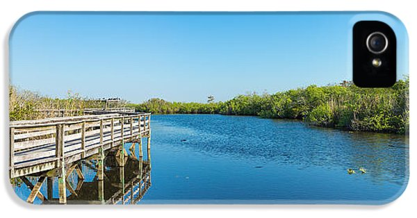 Anhinga iPhone 5 Case - Anhinga Trail Boardwalk, Everglades by Panoramic Images