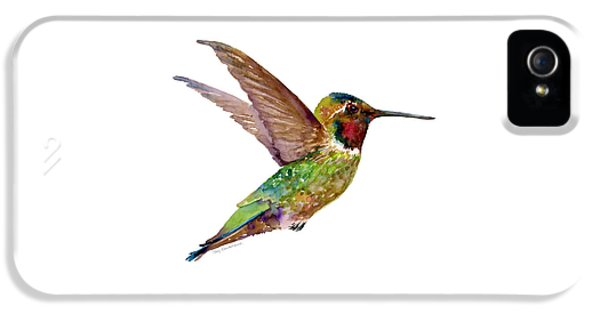 Anna Hummingbird IPhone 5 Case by Amy Kirkpatrick