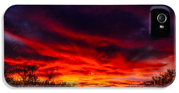 IPhone 5 Case featuring the photograph Another Tucson Sunset by Mark Myhaver