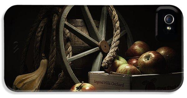 Apple Basket Still Life IPhone 5 Case