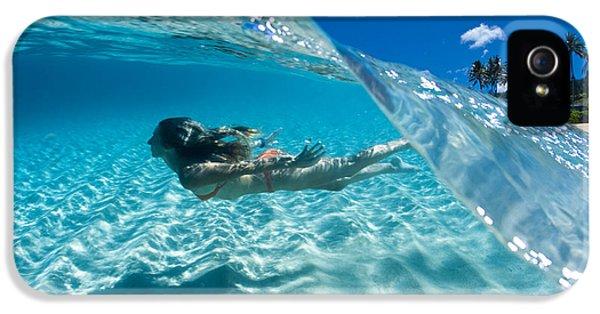 Aqua Dive IPhone 5 Case by Sean Davey