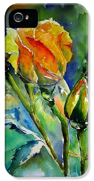 Aquarelle IPhone 5 Case by Elise Palmigiani