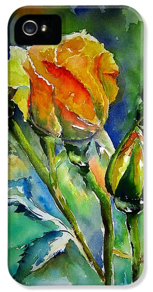 Aquarelle IPhone 5 / 5s Case by Elise Palmigiani
