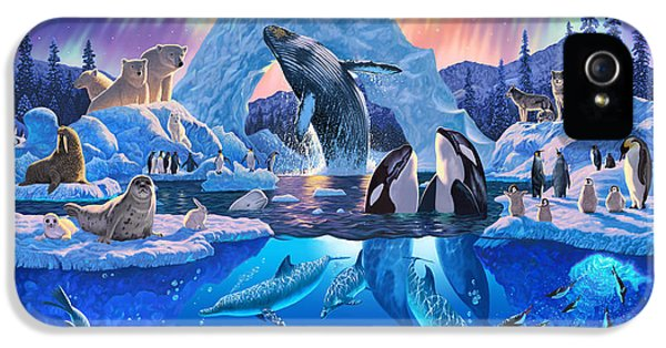 Arctic Harmony IPhone 5 Case by Chris Heitt