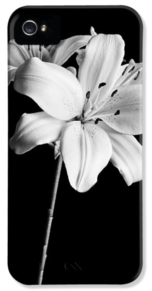 Asian Lilies 2 IPhone 5 Case by Sebastian Musial
