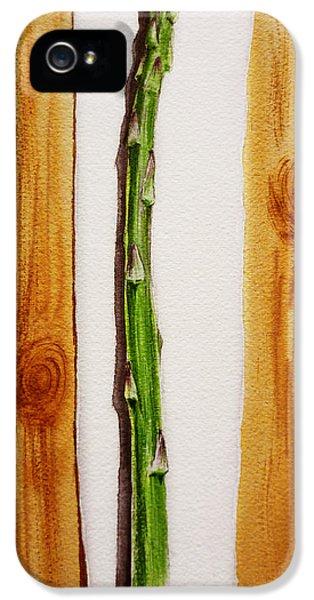 Asparagus Tasty Botanical Study IPhone 5 Case