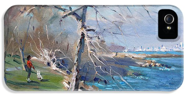 At The Park By Lake Ontario IPhone 5 Case