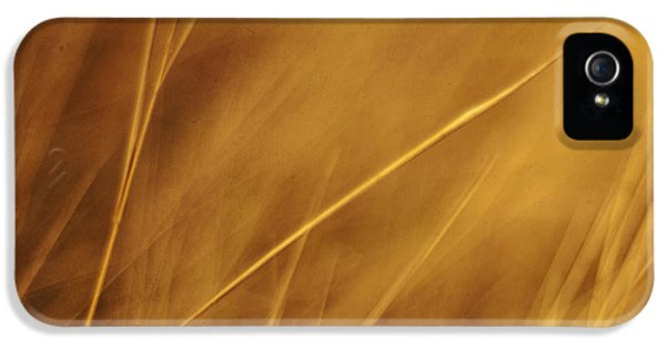 Aurum IPhone 5 Case by Priska Wettstein