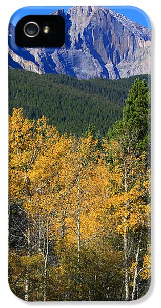Autumn Aspens And Longs Peak IPhone 5 Case by James BO  Insogna
